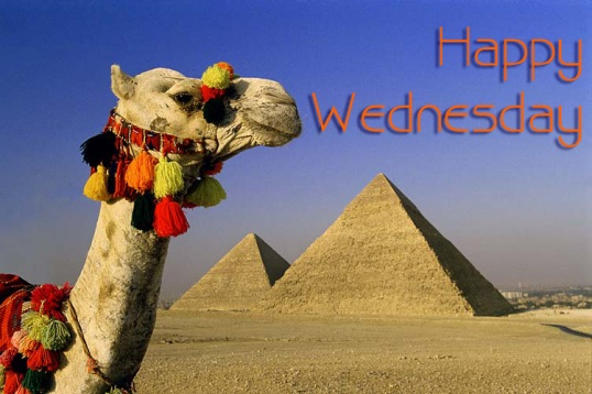 egypt_great_pyramid_camel
